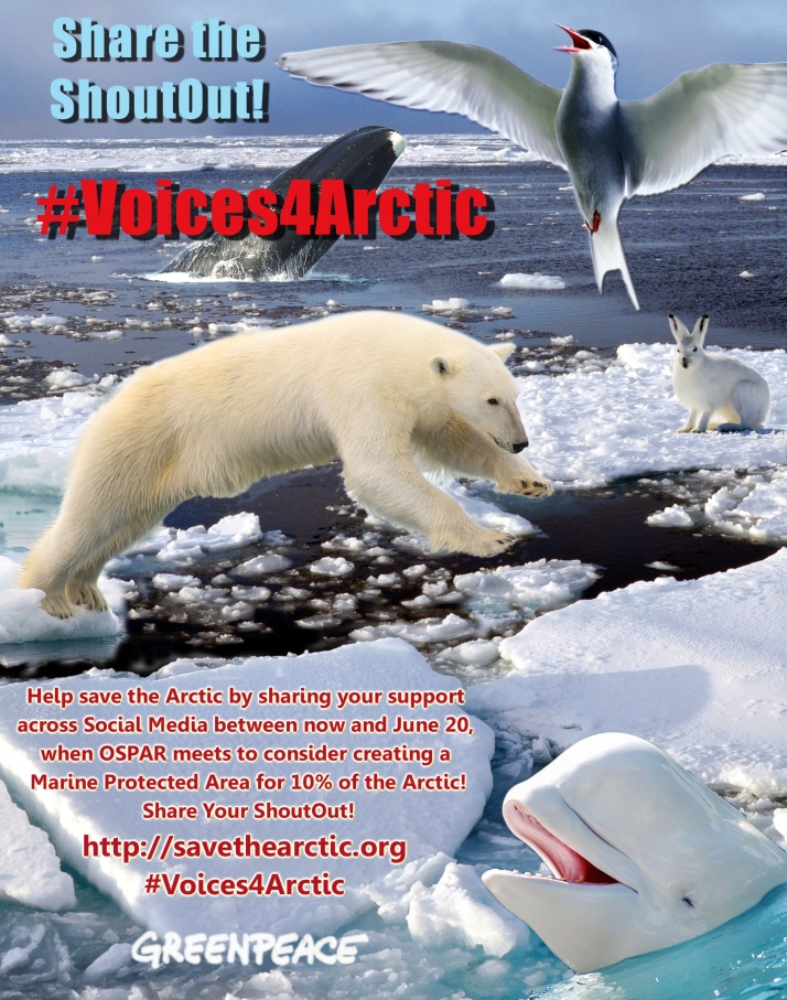 Share the ShoutOut across social media! Visit:http://savethearctic.org